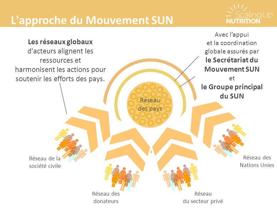 Réseau des pays Réseau des donateurs Réseau de la société civile Réseau du secteur privé Réseau des Nations Unies Les réseaux globaux d'acteurs aligne