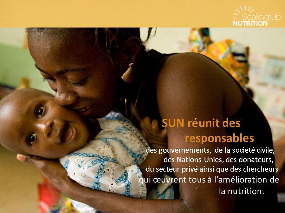 SUN réunit des responsables des gouvernements, de la société civile, des Nations-Unies, des donateurs, du secteur privé ainsi que des chercheurs qui œ