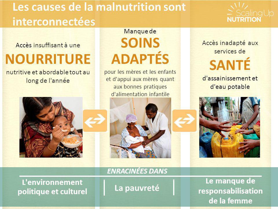 ENRACINÉES DANS La pauvreté Le manque de responsabilisation de la femme L'environnement politique et culturel Accès insuffisant à une NOURRITURE nutri