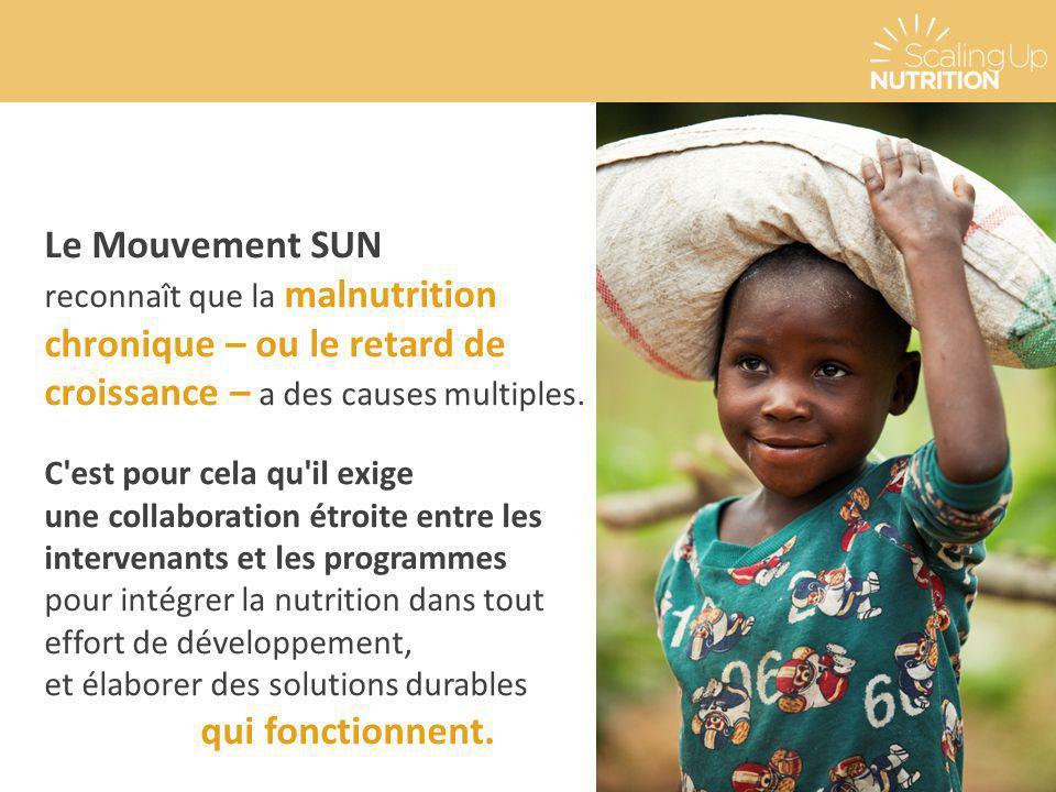 Le Mouvement SUN reconnaît que la malnutrition chronique – ou le retard de croissance – a des causes multiples. C'est pour cela qu'il exige une collab