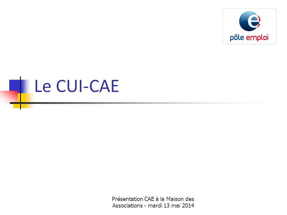 Présentation CAE à la Maison des Associations - mardi 13 mai 2014 Le CUI-CAE