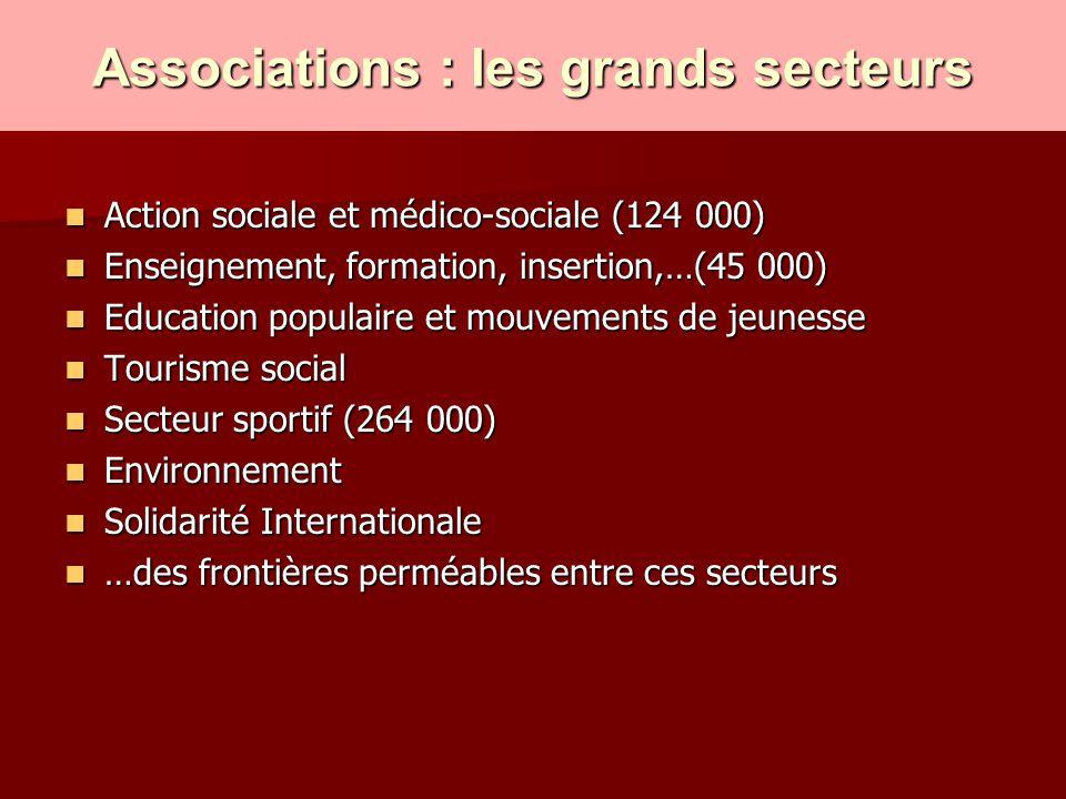 Associations : les grands secteurs Action sociale et médico-sociale (124 000) Action sociale et médico-sociale (124 000) Enseignement, formation, inse