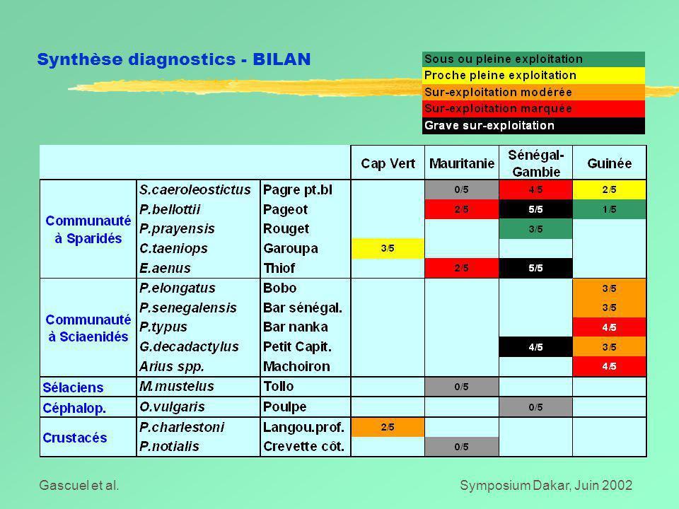 Gascuel et al.Symposium Dakar, Juin 2002 Synthèse diagnostics - BILAN