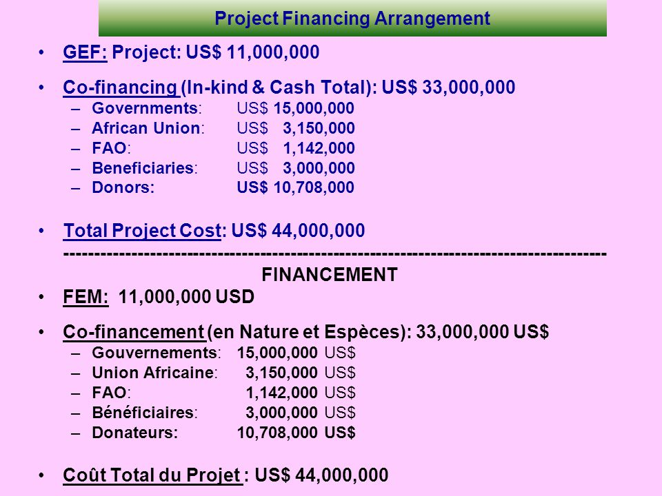 Project Financing Arrangement GEF: Project: US$ 11,000,000 Co-financing (In-kind & Cash Total): US$ 33,000,000 –Governments:US$ 15,000,000 –African Un