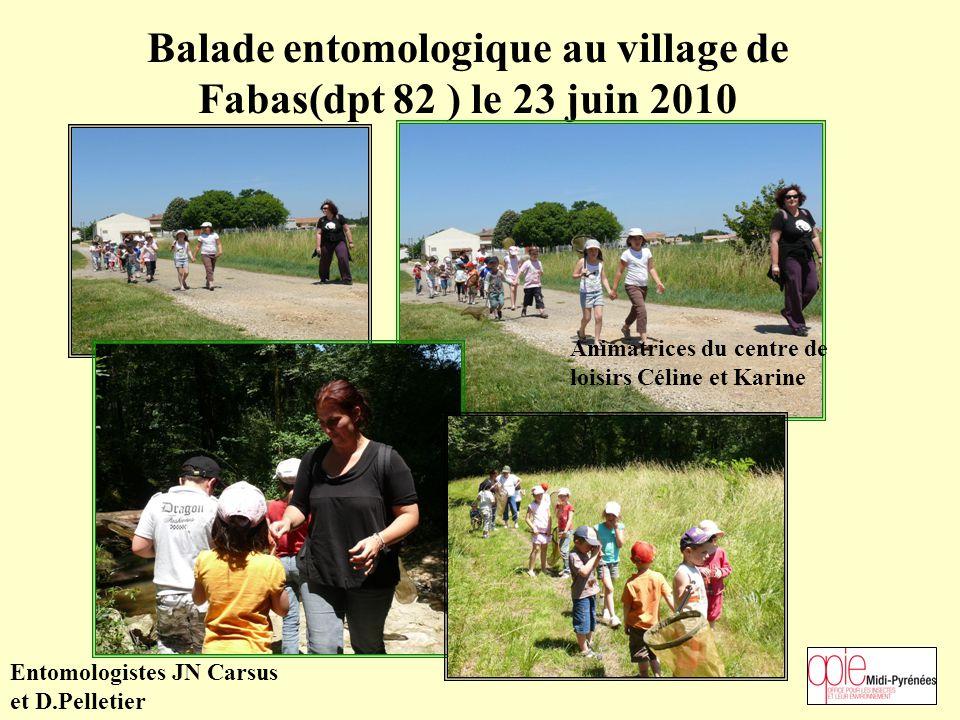 Balade entomologique au village de Fabas(dpt 82 ) le 23 juin 2010 Animatrices du centre de loisirs Céline et Karine Entomologistes JN Carsus et D.Pelletier