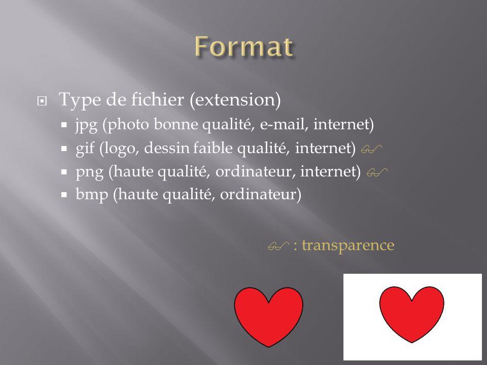  Type de fichier (extension)  jpg (photo bonne qualité, e-mail, internet)  gif (logo, dessin faible qualité, internet)   png (haute qualité, ordi