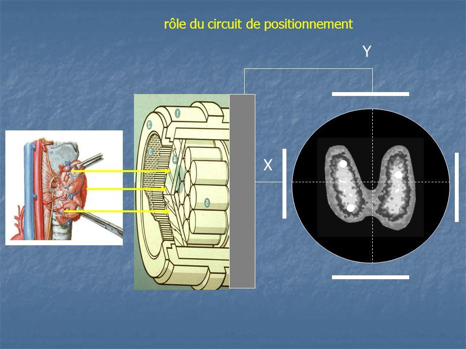 X Y rôle du circuit de positionnement