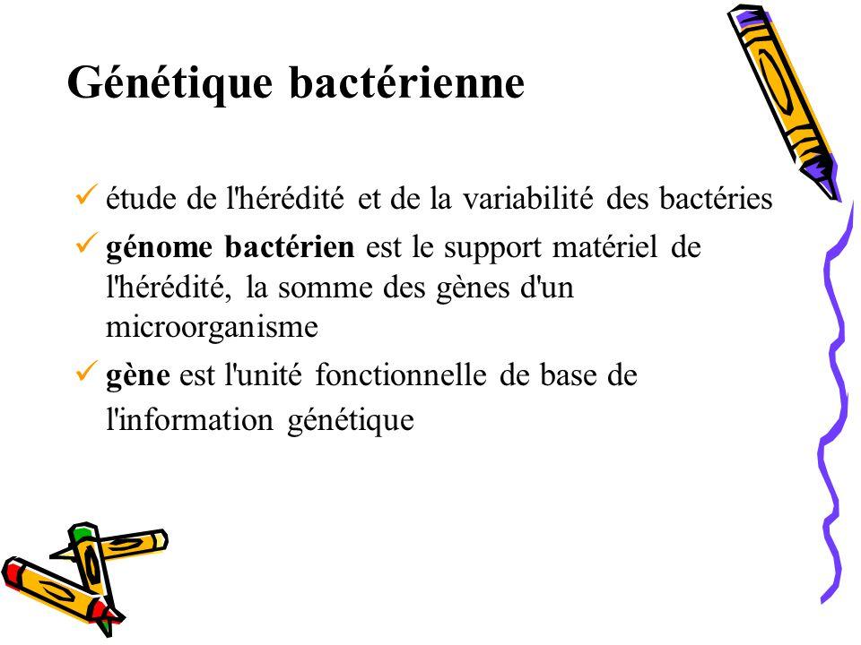 Génétique bactérienne étude de l hérédité et de la variabilité des bactéries génome bactérien est le support matériel de l hérédité, la somme des gènes d un microorganisme gène est l unité fonctionnelle de base de l information génétique