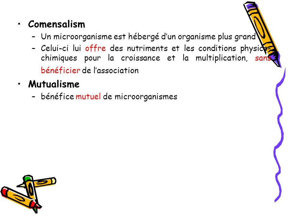 Comensalism –Un microorganisme est hébergé d'un organisme plus grand –Celui-ci lui offre des nutriments et les conditions physico- chimiques pour la croissance et la multiplication, sans bénéficier de l'association Mutualisme –bénéfice mutuel de microorganismes