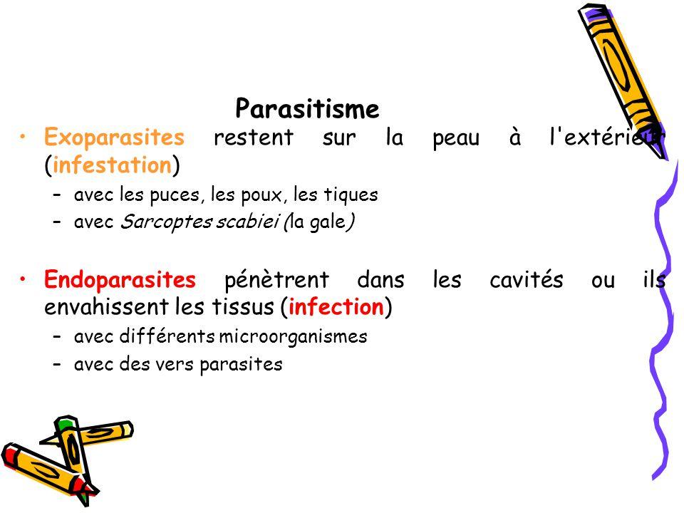 Parasitisme Exoparasites restent sur la peau à l extérieur (infestation) –avec les puces, les poux, les tiques –avec Sarcoptes scabiei (la gale) Endoparasites pénètrent dans les cavités ou ils envahissent les tissus (infection) –avec différents microorganismes –avec des vers parasites