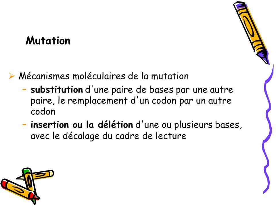 Mutation  Mécanismes moléculaires de la mutation - substitution d une paire de bases par une autre paire, le remplacement d un codon par un autre codon - insertion ou la délétion d une ou plusieurs bases, avec le décalage du cadre de lecture