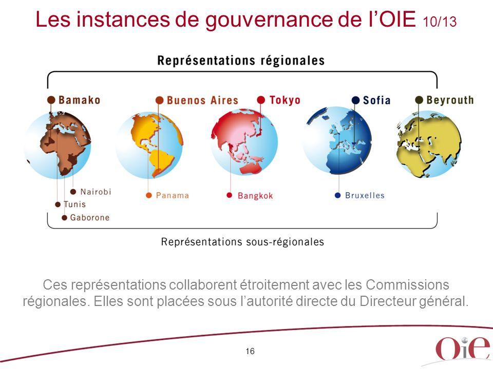 16 Ces représentations collaborent étroitement avec les Commissions régionales. Elles sont placées sous l'autorité directe du Directeur général. Les i
