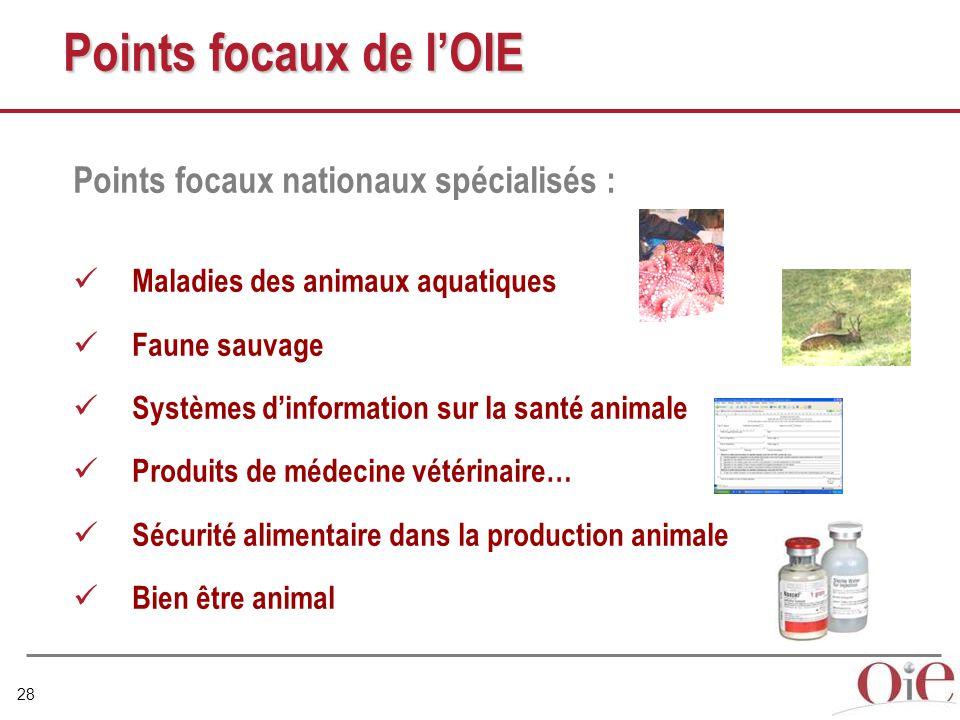 28 Points focaux de l'OIE Points focaux nationaux spécialisés : Maladies des animaux aquatiques Faune sauvage Systèmes d'information sur la santé animale Produits de médecine vétérinaire… Sécurité alimentaire dans la production animale Bien être animal