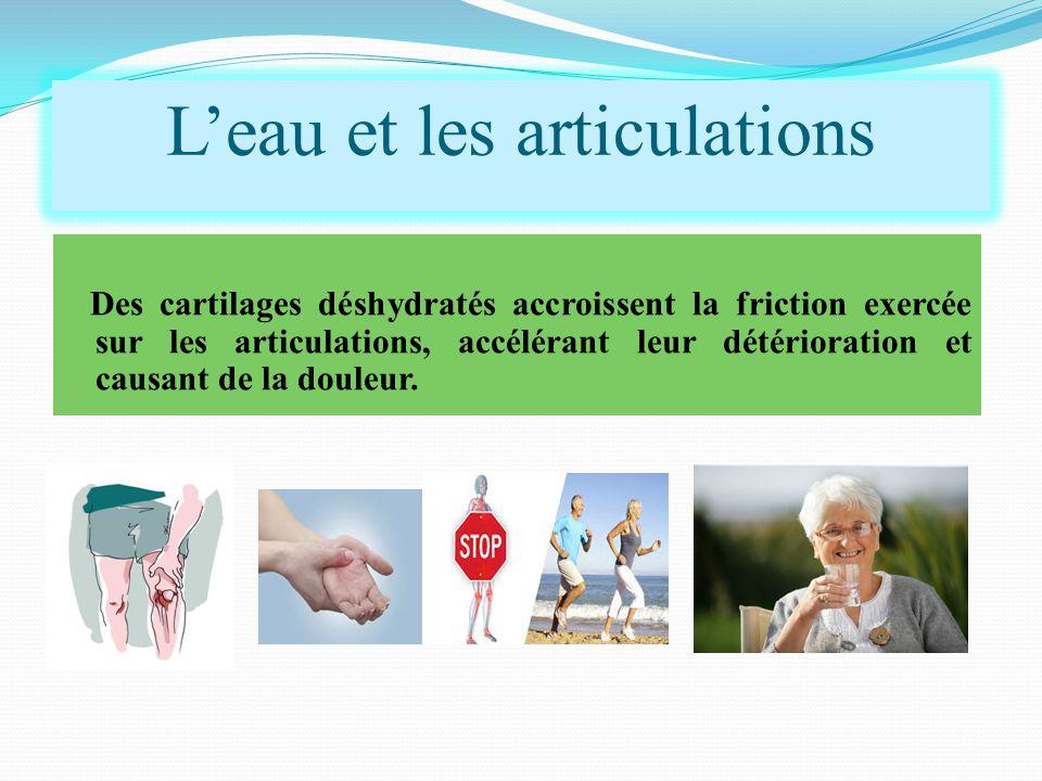 Des cartilages déshydratés accroissent la friction exercée sur les articulations, accélérant leur détérioration et causant de la douleur. L'eau et les