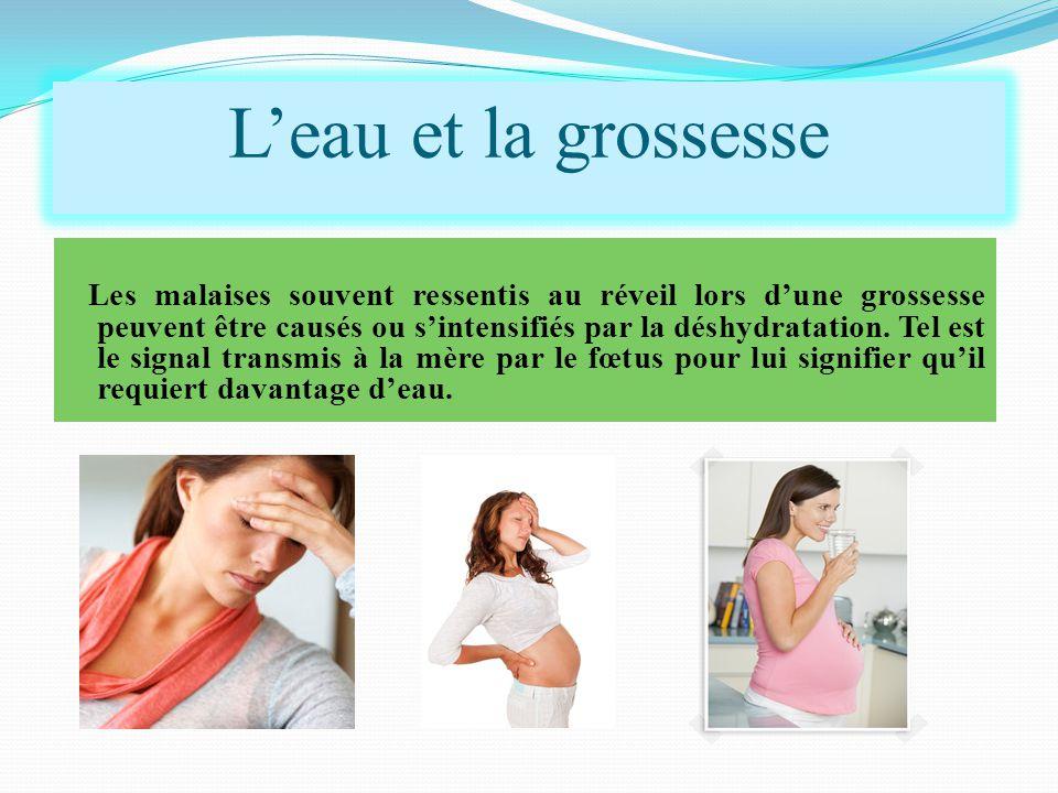Les malaises souvent ressentis au réveil lors d'une grossesse peuvent être causés ou s'intensifiés par la déshydratation. Tel est le signal transmis à