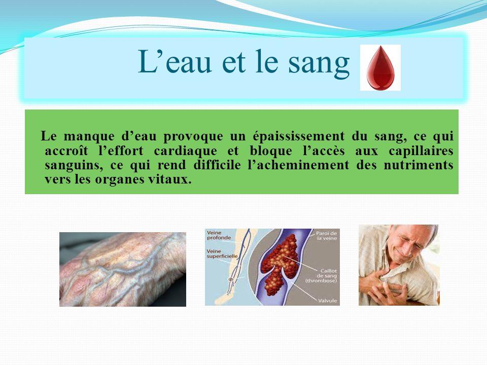 Le manque d'eau provoque un épaississement du sang, ce qui accroît l'effort cardiaque et bloque l'accès aux capillaires sanguins, ce qui rend difficile l'acheminement des nutriments vers les organes vitaux.