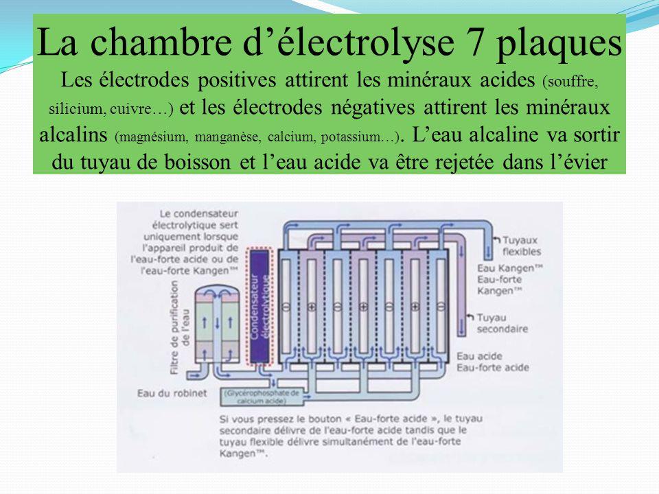 La chambre d'électrolyse 7 plaques Les électrodes positives attirent les minéraux acides (souffre, silicium, cuivre…) et les électrodes négatives attirent les minéraux alcalins (magnésium, manganèse, calcium, potassium…).