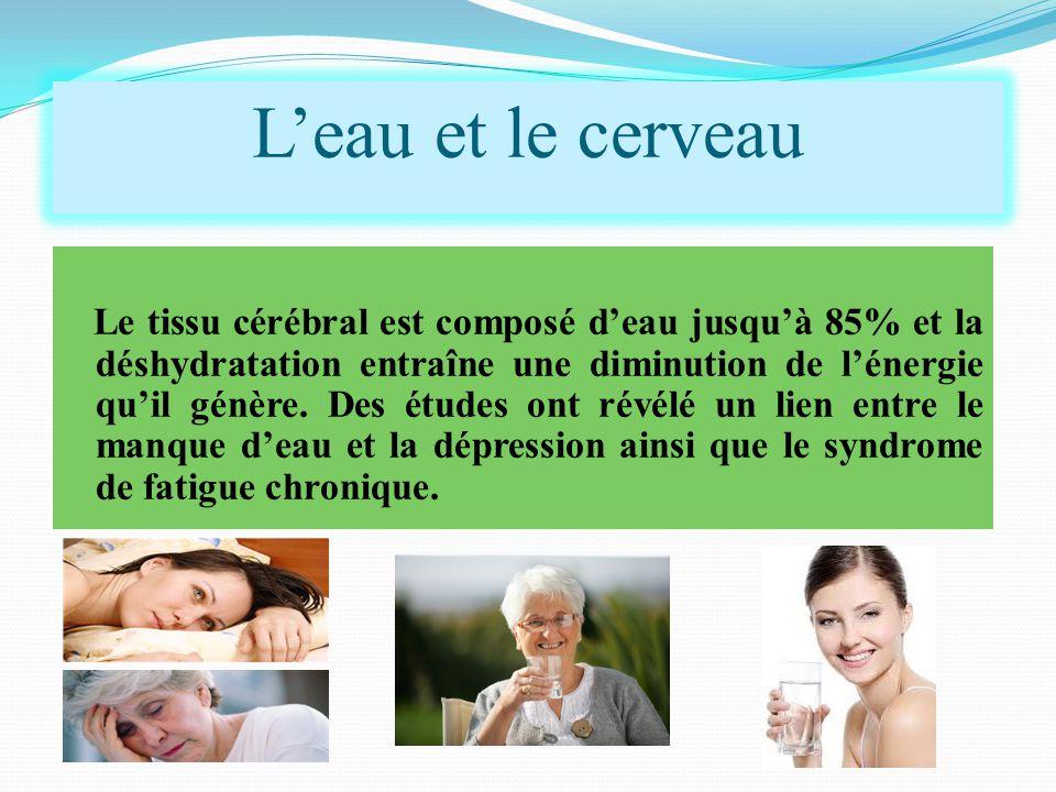 Le tissu cérébral est composé d'eau jusqu'à 85% et la déshydratation entraîne une diminution de l'énergie qu'il génère. Des études ont révélé un lien