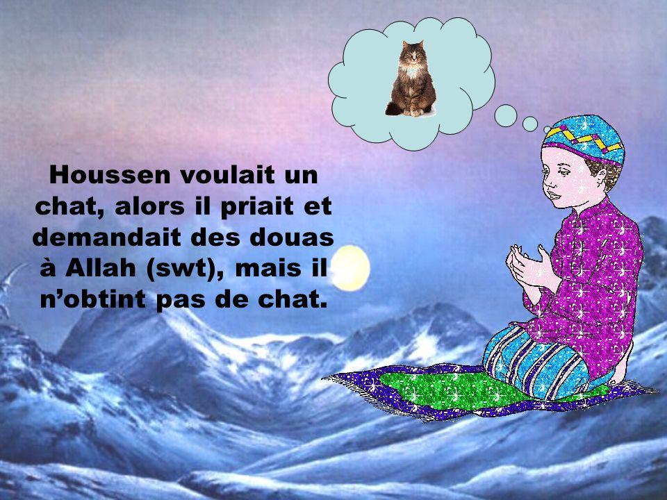Houssen voulait un chat, alors il priait et demandait des douas à Allah (swt), mais il n'obtint pas de chat.