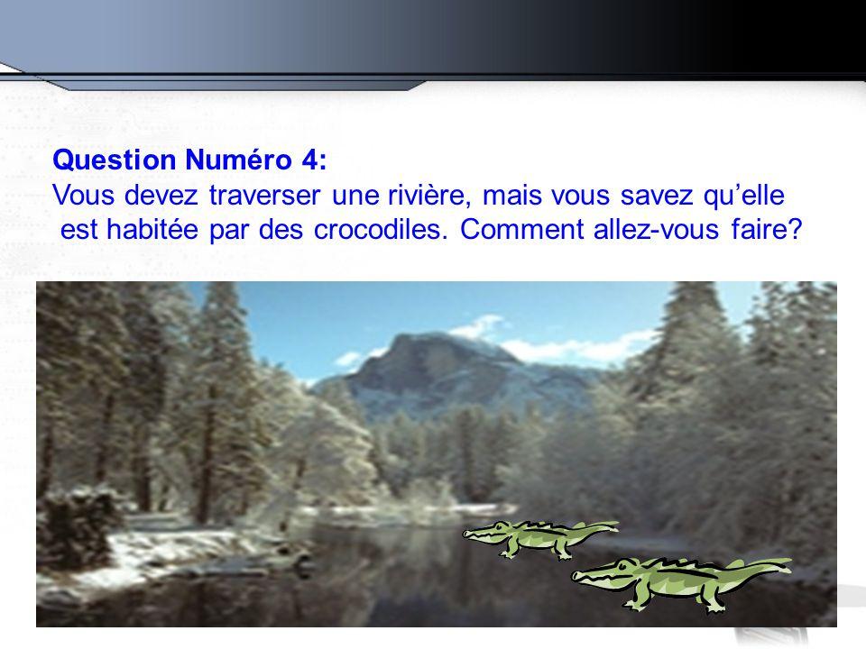 Question Numéro 4: Vous devez traverser une rivière, mais vous savez qu'elle est habitée par des crocodiles. Comment allez-vous faire?