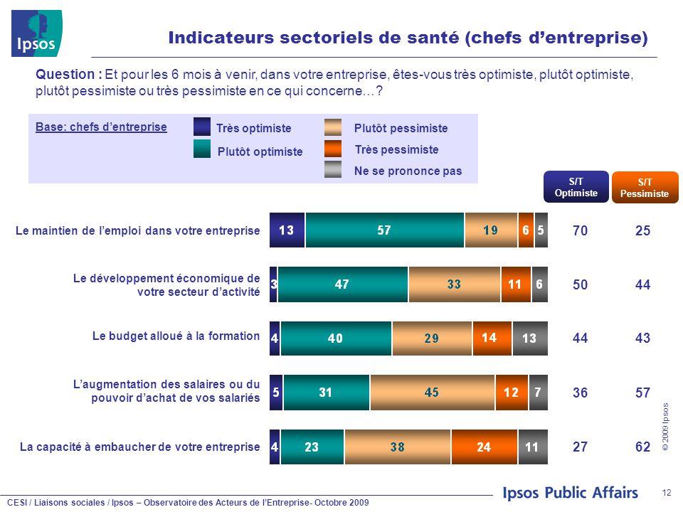CESI / Liaisons sociales / Ipsos – Observatoire des Acteurs de l'Entreprise- Octobre 2009 © 2009 Ipsos 12 Indicateurs sectoriels de santé (chefs d'ent