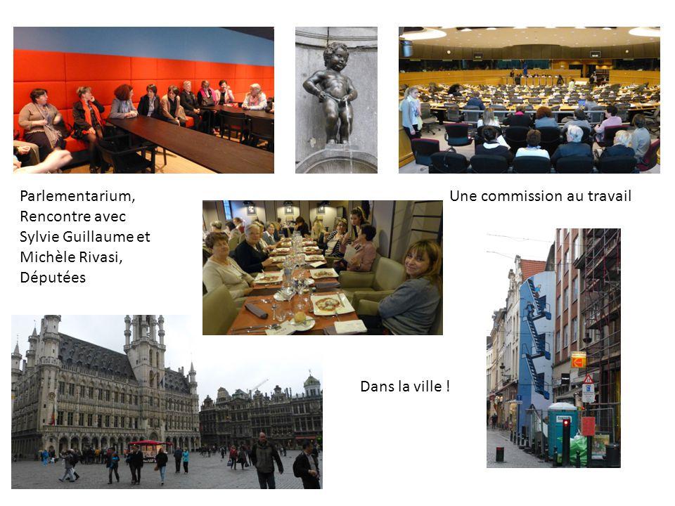 Parlementarium, Rencontre avec Sylvie Guillaume et Michèle Rivasi, Députées Une commission au travail Dans la ville !