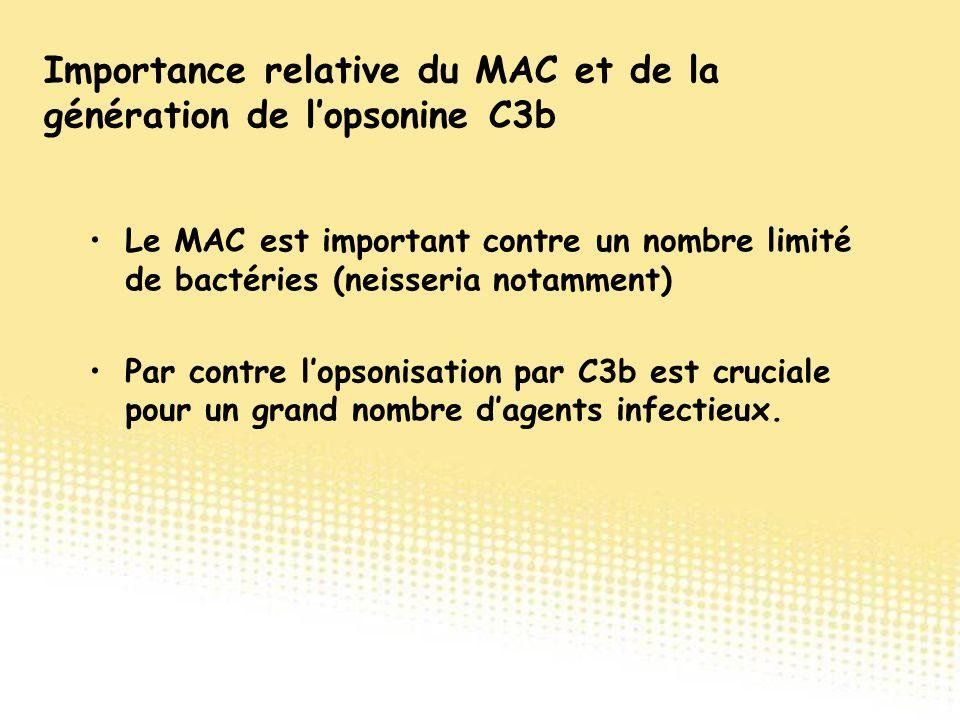 Le MAC est important contre un nombre limité de bactéries (neisseria notamment) Par contre l'opsonisation par C3b est cruciale pour un grand nombre d'