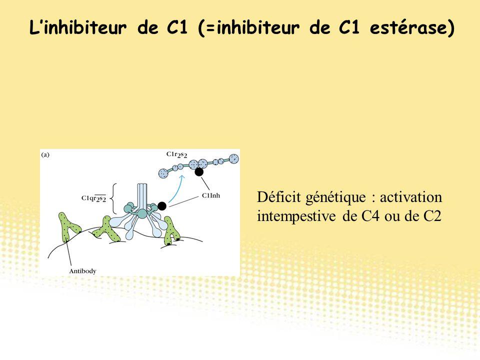 Déficit génétique : activation intempestive de C4 ou de C2 L'inhibiteur de C1 (=inhibiteur de C1 estérase)