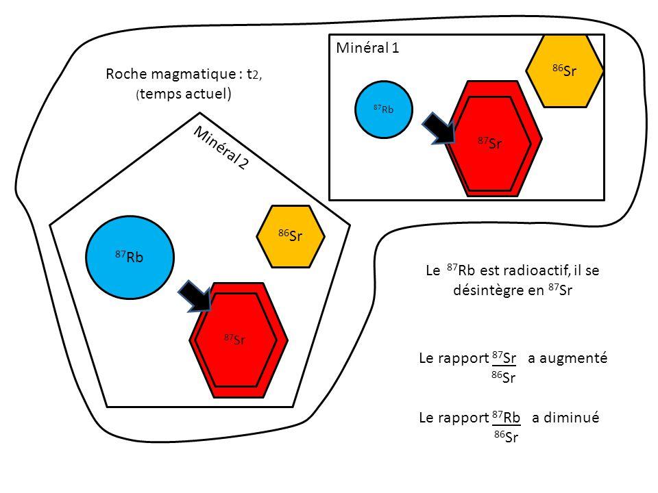87 Sr 86 Sr 87 Rb 86 Sr 87 Sr initial 86 Sr t 0 = (cristallisation) minéral 1 minéral 2 t 2 (temps actuel) t1t1 87 Sr augmente 86 Sr 87 Rb diminue 86 Sr Le 87 Rb est radioactif, il se désintègre en 87 Sr