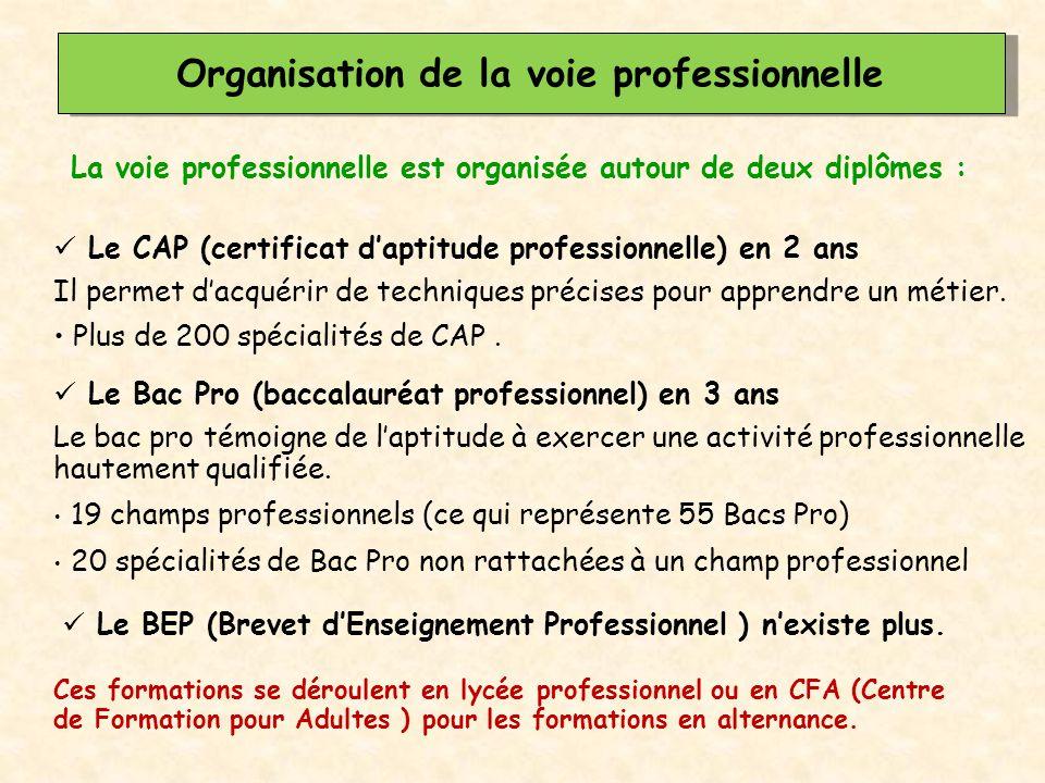 La voie professionnelle est organisée autour de deux diplômes : Organisation de la voie professionnelle Ces formations se déroulent en lycée professio
