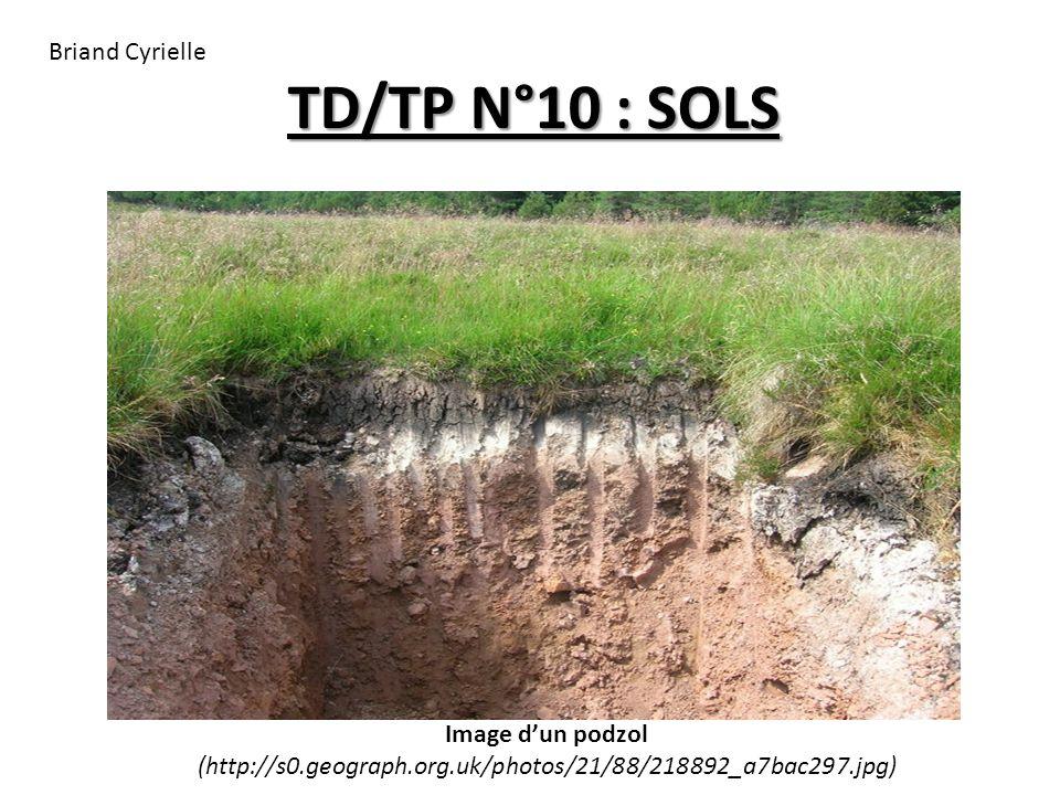 TD/TP N°10 : SOLS Image d'un podzol (http://s0.geograph.org.uk/photos/21/88/218892_a7bac297.jpg) Briand Cyrielle