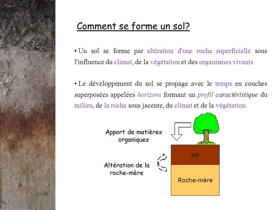 - A = horizon de surface contenant de la matière organique Qu'est-ce qui caractérise un sol.