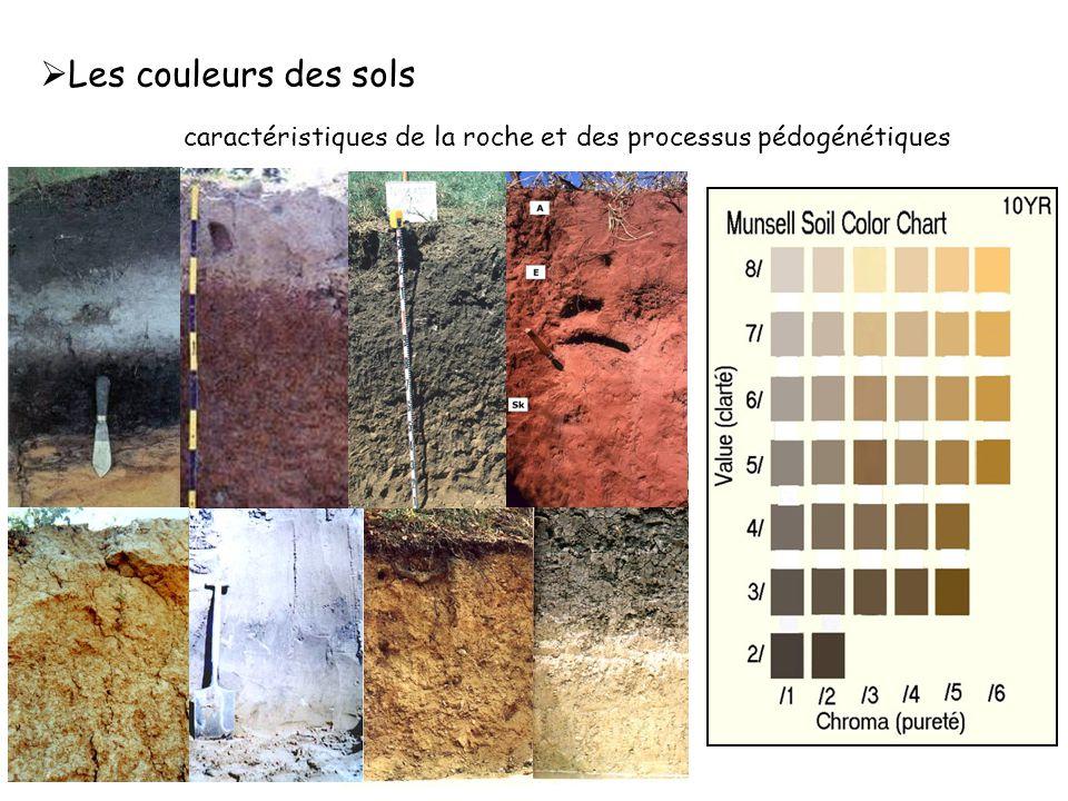 caractéristiques de la roche et des processus pédogénétiques  Les couleurs des sols