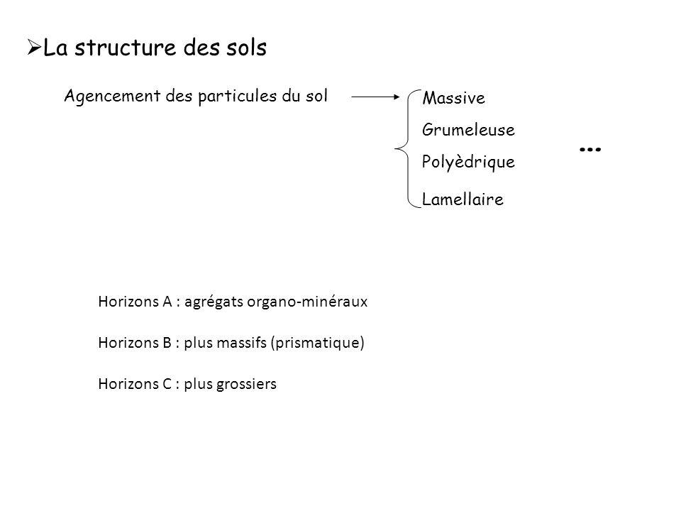 - en profondeur : -MO faible donc CEC liée à MO est négligeable -CEC liée aux Argiles.