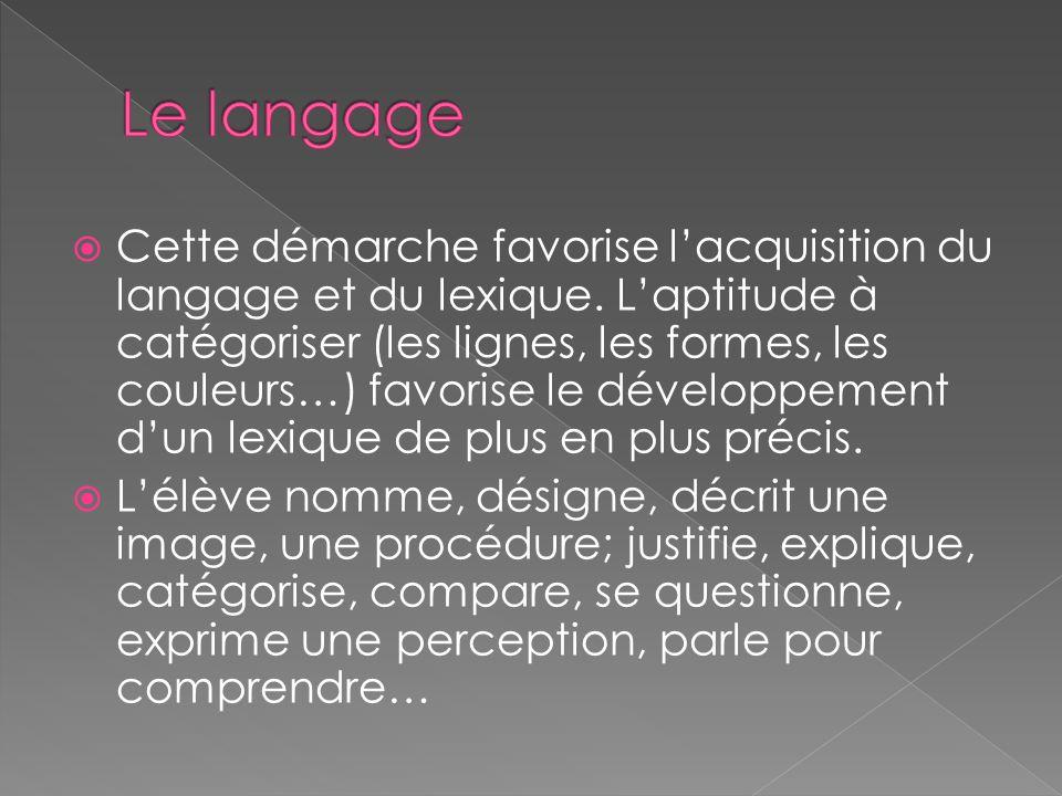  Cette démarche favorise l'acquisition du langage et du lexique. L'aptitude à catégoriser (les lignes, les formes, les couleurs…) favorise le dévelop