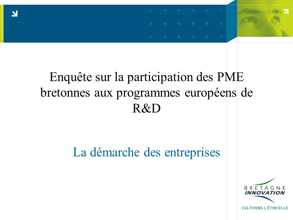 Enquête sur la participation des PME bretonnes aux programmes européens de R&D La démarche des entreprises