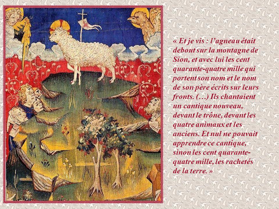 Si la révélation de saint Jean insiste sur le culte qui sera rendu à la bête sur toute la terre par les hommes enracinés dans leur péché, c'est pour a