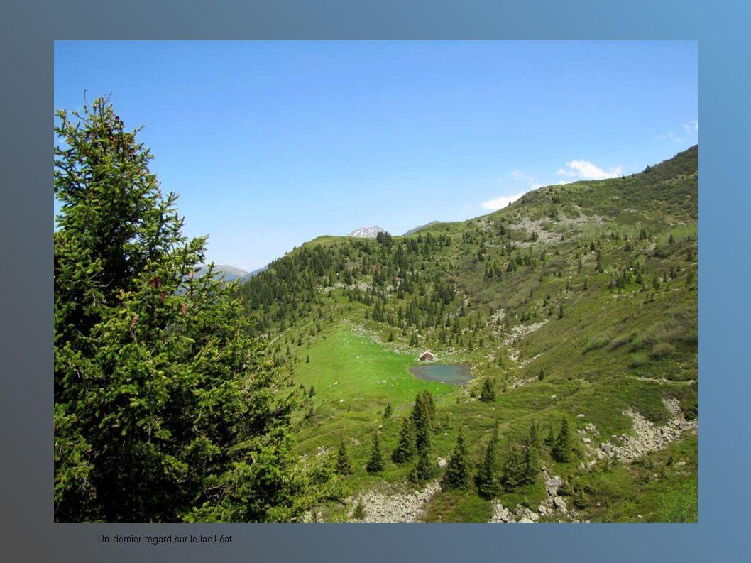 Vers Chambéry au fond
