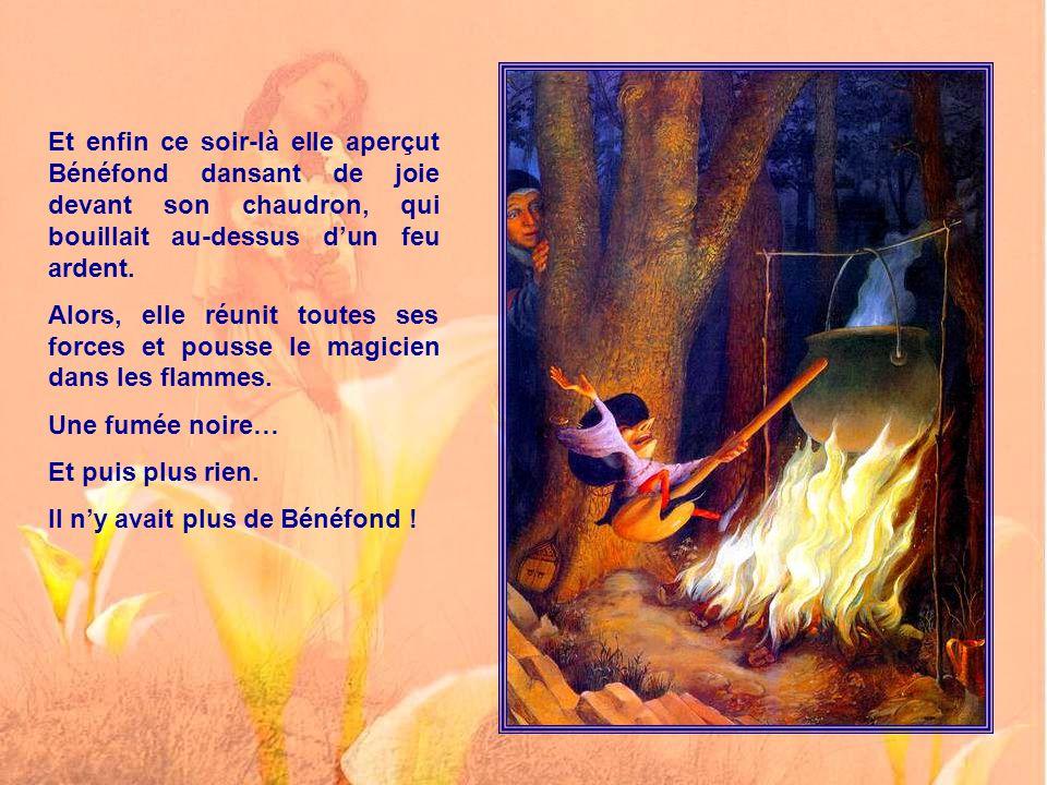 Dame Isaure cependant – les fées ne meurent-elles jamais ? – Dame Isaure montait une garde sans relâche. Elle ne quittait guère la Colline Sacrée, ou