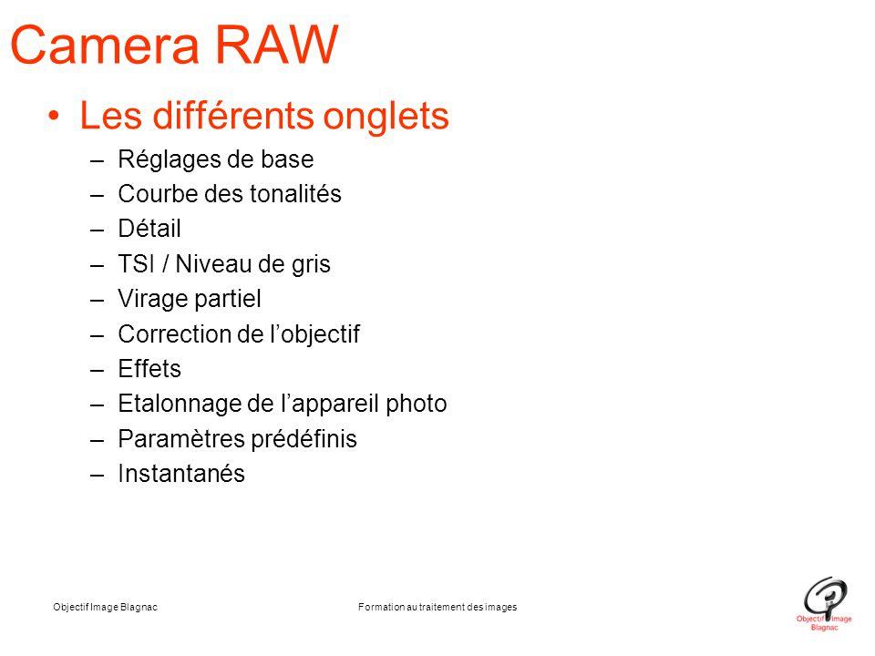 Objectif Image BlagnacFormation au traitement des images Camera RAW Les différents onglets –Réglages de base –Courbe des tonalités –Détail –TSI / Nive