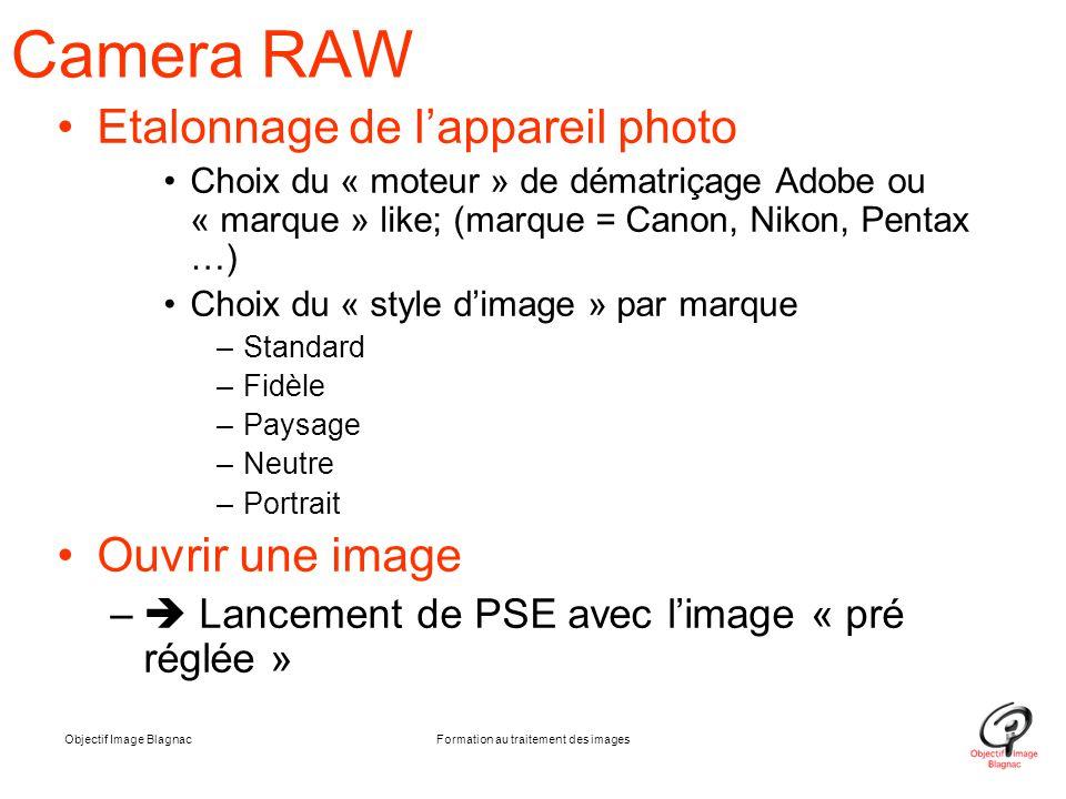 Objectif Image BlagnacFormation au traitement des images Camera RAW Etalonnage de l'appareil photo Choix du « moteur » de dématriçage Adobe ou « marqu