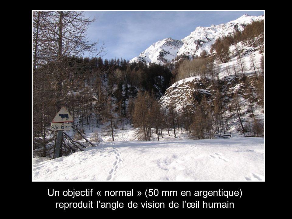 Un objectif « normal » (50 mm en argentique) reproduit l'angle de vision de l'œil humain