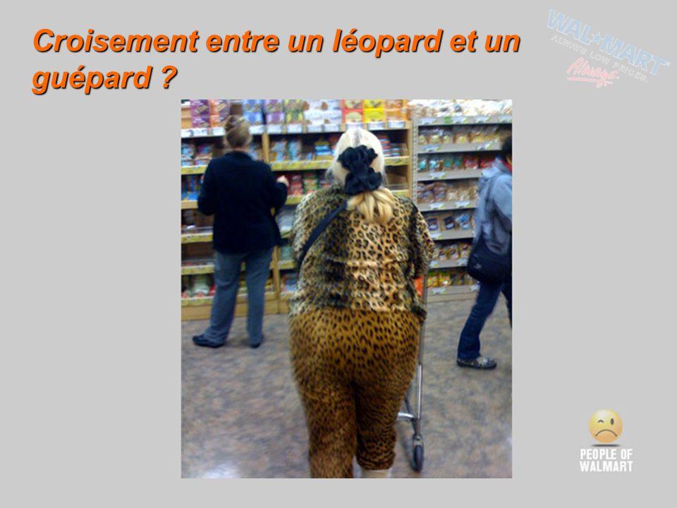 Croisement entre un léopard et un guépard ?