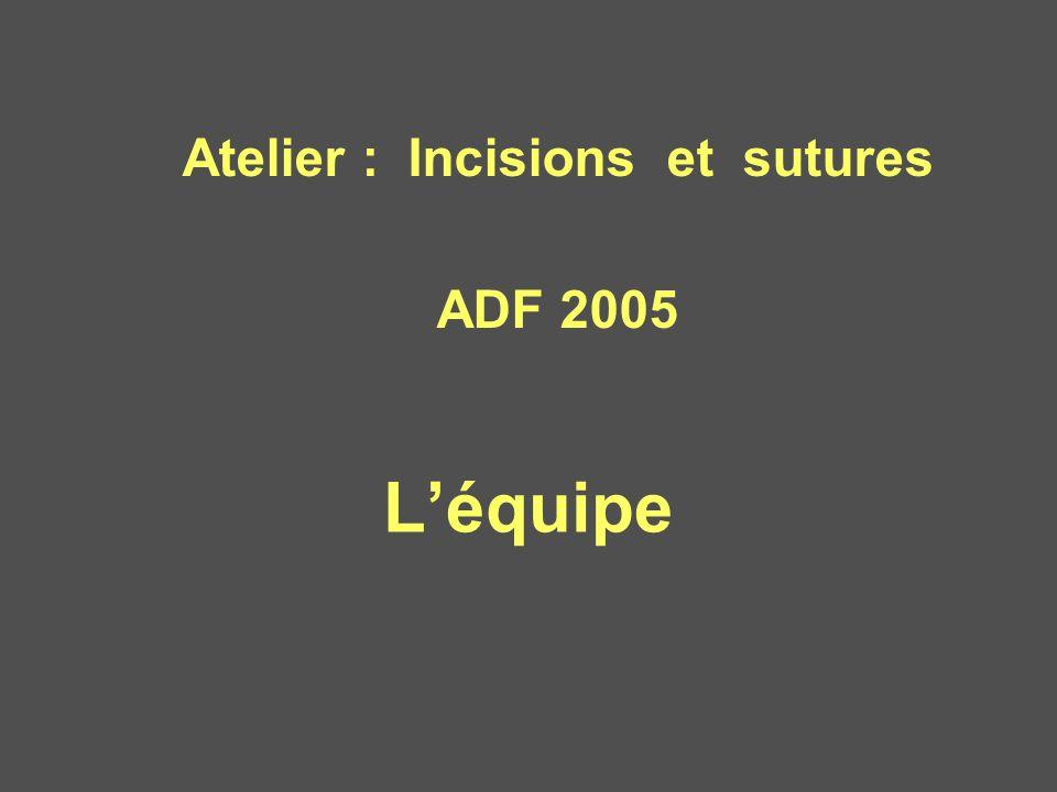 L'équipe Atelier : Incisions et sutures ADF 2005