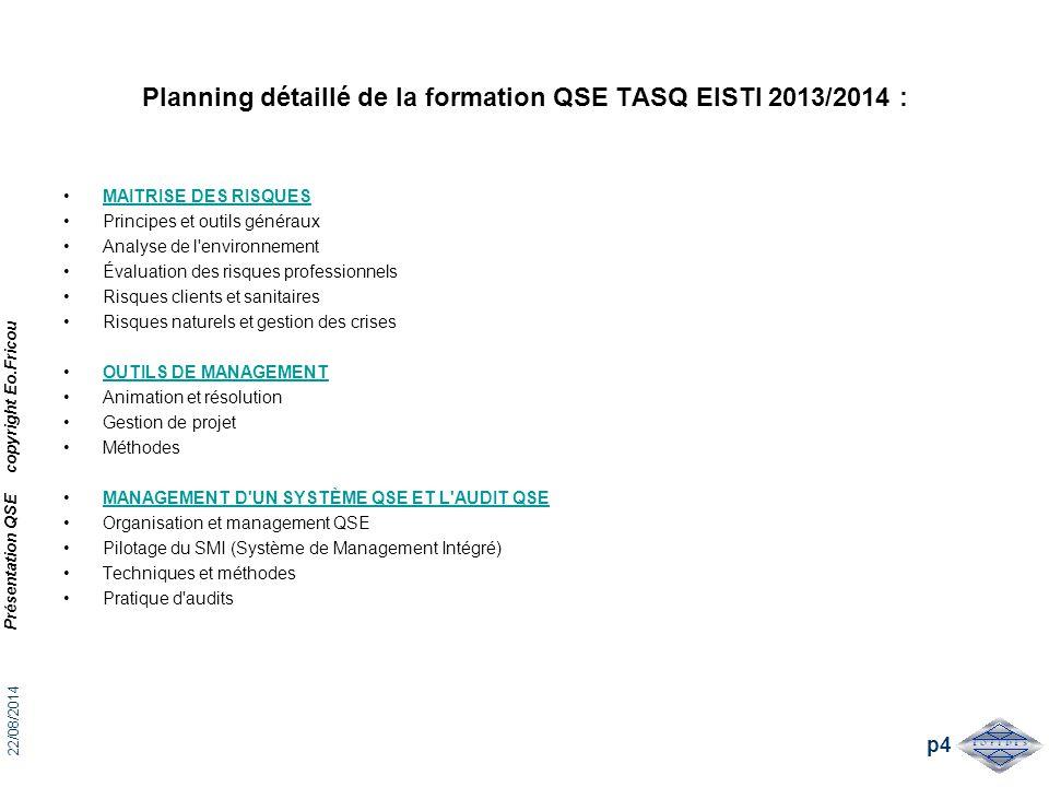 Planning détaillé de la formation QSE TASQ EISTI 2013/2014 : MAITRISE DES RISQUES Principes et outils généraux Analyse de l'environnement Évaluation d