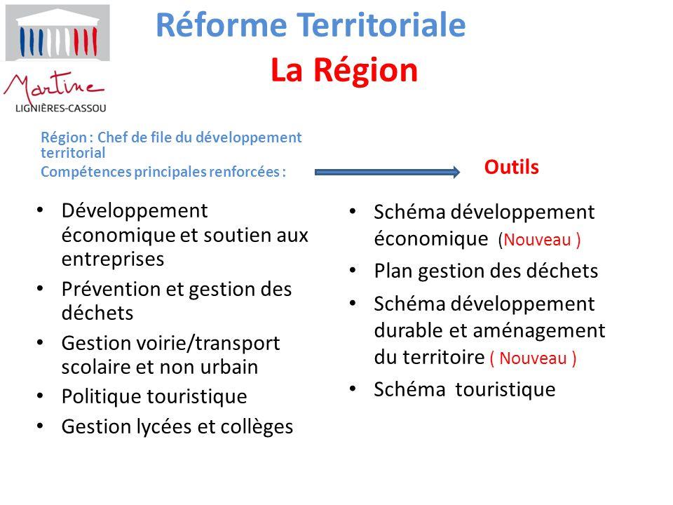 Réforme Territoriale La Région Région : Chef de file du développement territorial Compétences principales renforcées : Développement économique et sou
