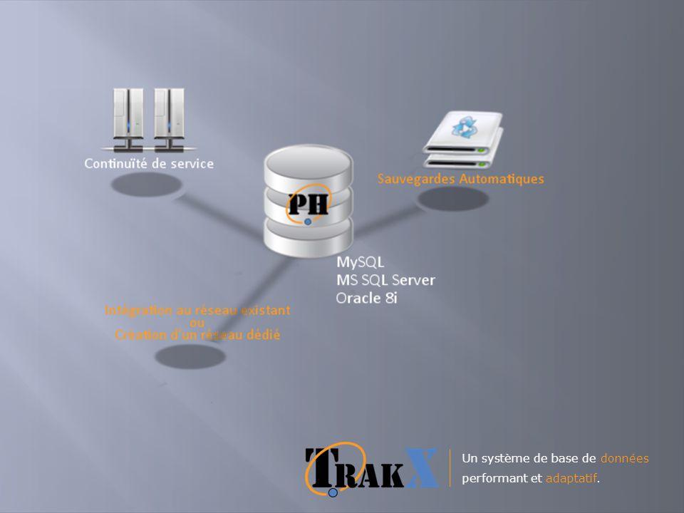 Un système de base de données performant et adaptatif.