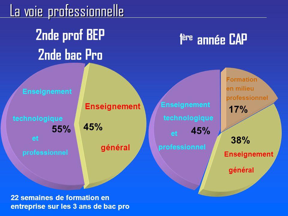 La voie professionnelle Enseignement général 45% 2nde prof BEP 2nde bac Pro 1 ère année CAP Enseignement général 38% Enseignement technologique et professionnel 55% Enseignement technologique et professionnel 45% Formation en milieu professionnel 17% 22 semaines de formation en entreprise sur les 3 ans de bac pro