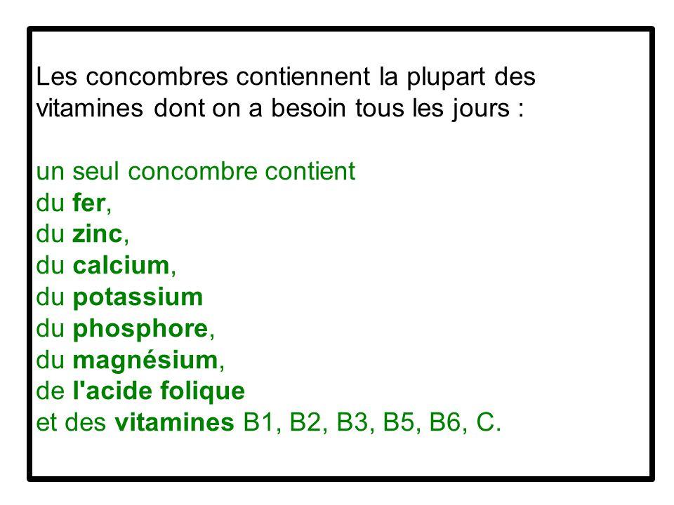 Les concombres contiennent la plupart des vitamines dont on a besoin tous les jours : un seul concombre contient du fer, du zinc, du calcium, du potassium du phosphore, du magnésium, de l acide folique et des vitamines B1, B2, B3, B5, B6, C.