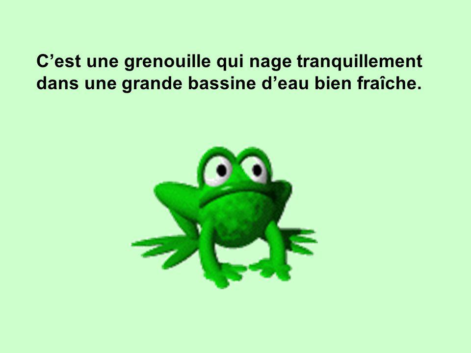 Connaissez-vous la parabole de la grenouille ?